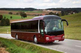 Аренда автобуса в Боровичи на 45-55 мест