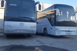 Автобус Оса