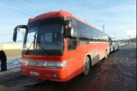 Детские перевозки автобусами Рогнедино