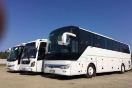 Аренда автобусов Neoplan, Mercedes, Голден Драгон Шатой