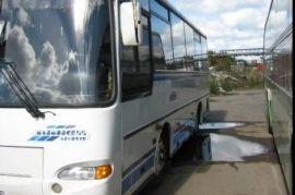 Аренда автобусов и микроавтобусов 7-50 мест Березовка